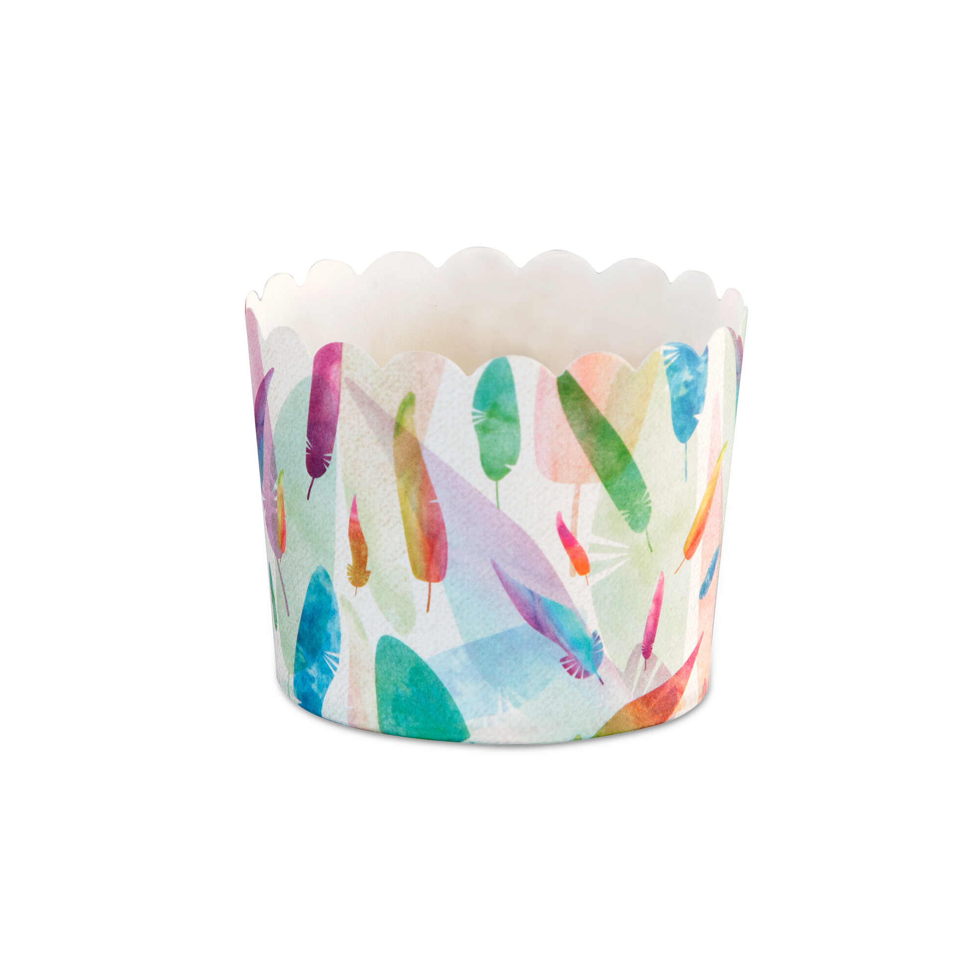 Cupcake liner - Rainbow Feathers - Maxi - 12 pieces