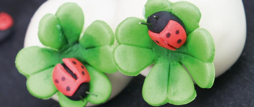 Rz Gluecksbringer Cakepops 02
